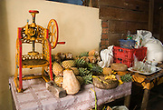 Pineapples and other fruit sit beside an ol mechanical press at a restaurant just outside the entrance to Angkor Wat.