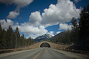 Highway 90 - Lolo National Forest - Western Montana