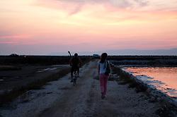 Il complesso produttivo delle saline è situato nel comune italiano di Margherita di Savoia (nome dato dagli abitanti in onore alla regina d'Italia che molto si adoperò nei confronti dei salinieri) nella provincia di Barletta-Andria-Trani in Puglia. Sono le più grandi d'Europa e le seconde nel mondo, in grado di produrre circa la metà del sale marino nazionale (500.000 di tonnellate annue).All'interno dei suoi bacini si sono insediate popolazioni di uccelli migratori e non, divenuti stanziali quali il fenicottero rosa, airone cenerino, garzetta, avocetta, cavaliere d'Italia, chiurlo, chiurlotello, fischione, volpoca..Nella foto veri e propri sentieri separano i bacini; gli stessi vengono utilizzati dai mezzi per la raccolta del sale, una volta che l'acqua è completamente evaporata.