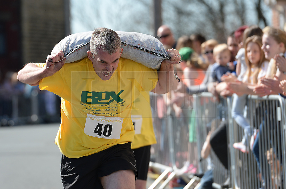 © Licensed to London News Pictures. 06/04/2015. Gawthorpe, UK. A competitor feels the strain during the World Coal Carrying Championships, Gawthorpe, West Yorkshire. Photo credit : Anna Gowthorpe/LNP