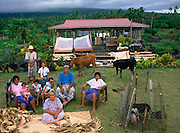 The Lagavale family with all their possessions in front of their house. The family lives in a 720-square-foot tin-roofed open-air house with a detached cookhouse in Poutasi Village, Western Samoa. The Lagavales have pigs, chickens, a few calves, fruit trees and a vegetable garden. They farm, fish, and make crafts to support themselves. They also work for others locally, which helps supplement their modest needs. Published in Material World, pages 170-171.