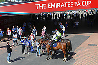 Football - 2017 / 2018 FA Cup - Semi Final: Chelsea vs. Southampton<br /> <br /> The Police horses receiving lots of attention on the way towards Wembley Stadium <br /> <br /> COLORSPORT/SHAUN BOGGUST