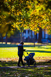 A woman pushes her baby through Queens Park, North West London as the early morning sunshine illuminates the leaves of trees as autumn colours begin to set in. London, October 01 2018.
