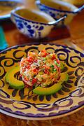 Ceviche, Las Alamandas Resort, Costalegre, Jalisco, Mexico
