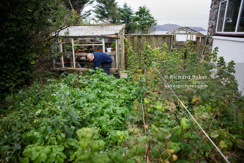 Crofter Angus McHattie bends over to tend an overgrown family garden in the hamlet of Waterloo, Isle of Skye, Scotland.