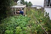 Crofter Angus McHattie bends over to tend an overgrown family garden in the hamlet of Waterloo, Isle of Skye, Scotland.