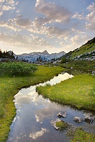 Eveing clouds reflected in stream flowing in an alpine basin of Mount Rohr, Coast Mountains British Columbia Canada