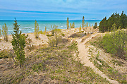 Sand dunes along Lake Huron<br />Pinery Provincial Park<br />Ontario<br />Canada
