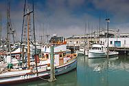 Fishing boats at Fisherman's Wharf, San Francisco, California