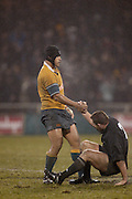 13th July 2002, Jade Stadium, Christchurch, New Zealand.<br />Rugby Union, Tri-Nations/Bledsiloe Cup: All Blacks v <br />Australia.<br />Totai Kefu lends a helping hand to Mark Hammett after the Wallabies lost to the All Blacks 6-12.<br />Pic: Sandra Teddy/Photosport<br /><br /><br /><br />toutai