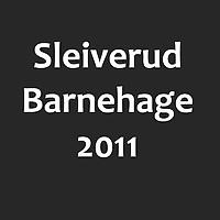 Sleiverud_2011