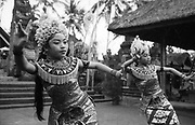 First field trip with Margaret Mead to Bali, December 1957 - January 1958