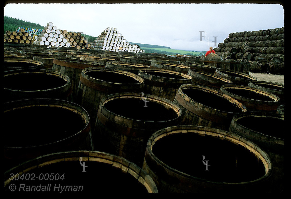 Cooper fetches used cask in yard @ Speyside Cooperage to repair for whisky industry; Dufftown. Scotland