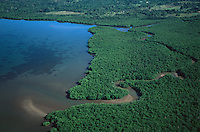 Aerial view of a mangrove estuary on Busuanga Island, Philippines.  Oct 01.