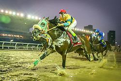 Hippopotamus com a condução de B.Santos vence o páreo de 1.600m para produtos de 5 anos s/mais de três vitórias, 6 anos s/mais de quatro vitórias e 7 anos s/mais de cinco vitóriascom o tempo de 1m47s. FOTO: Jefferson Bernardes/ Agência Preview