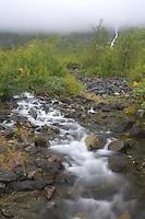 Cascading river, Alep Spatnek, Sarek National Park, Laponia World Heritage Site, Sweden