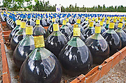 Demijohns with Rivesaltes and maury wine stored outside for aging. Mas Amiel, Maury, Roussillon, France