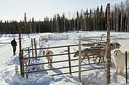 Permafrost scientist Kenji Yoshikawa at his farm outside Fairbanks, Alaska, USA.