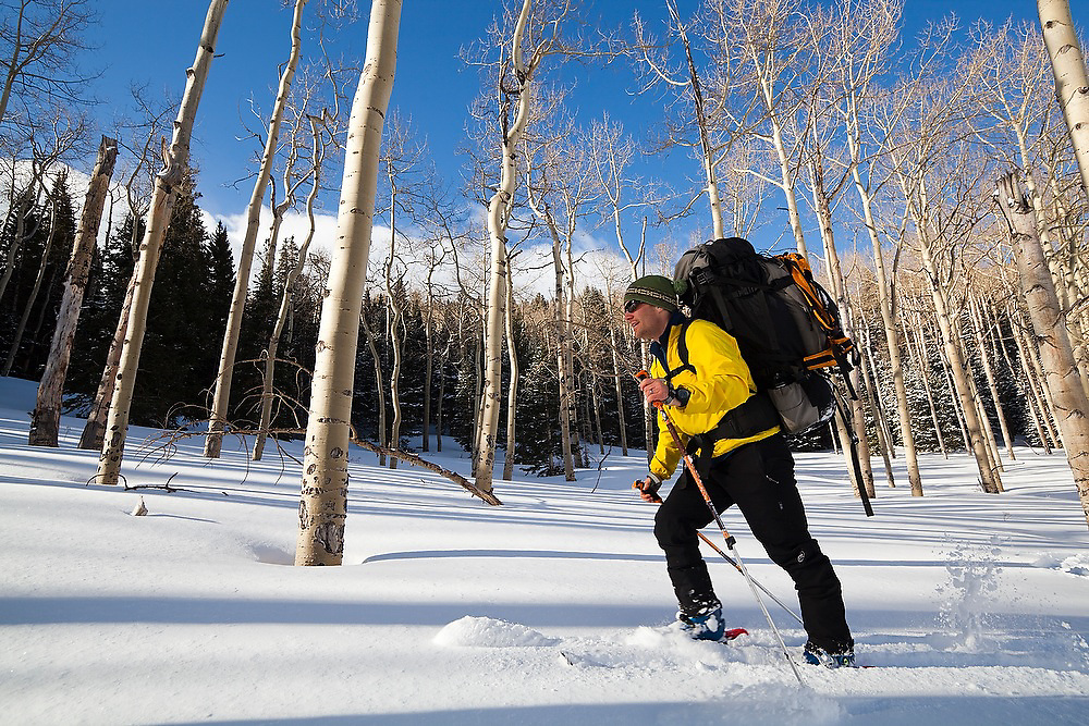 Backcountry skier Judd MacRae travels through an open aspen grove in Uncompahgre National Forest, Colorado.