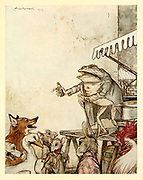 The Quack Frog from the book ' Aesop's fables ' Published in 1912 in London by Heinemann and in  New York by Page Doubleday Illustrated by Arthur Rackham,