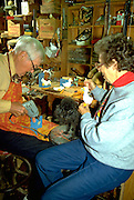 Retired physician age 86 with wife 73 and poodle working in home shop.  Minneapolis  Minnesota USA