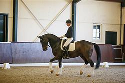 Wolfram and Brigitte Wittig, (GER)<br /> Greatest Dressage Horses Ever, Valegro<br /> Global Dressage Forum<br /> Academy Bartels - Hooge Mierden 2015<br /> © Hippo Foto - Dirk Caremans<br /> 27/10/15