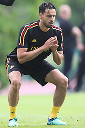 May 31, 2018 - Tubize, BELGIUM - Belgium's Nacer Chadli pictured during a training session of the Belgian national soccer team Red Devils, Thursday 31 May 2018, in Tubize. The Red Devils started their preparations for the upcoming FIFA World Cup 2018 in Russia. BELGA PHOTO BRUNO FAHY (Credit Image: © Bruno Fahy/Belga via ZUMA Press)