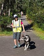 A volunteer takes a sled dog for a walk at the Denali Kennels; Denali National Park, Alaska.