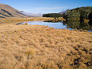 Scene from Mavora Lakes Park, near Mossburn, Southland, New Zealand.