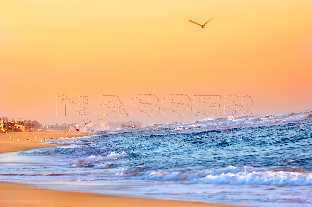 Sunset Evening over Delray Public Beach Florida with a burst of golden sunshine reflecting over ocean waves. Highway A1A N Ocean Blvd. Biodiverse ecological beaches and oceans.