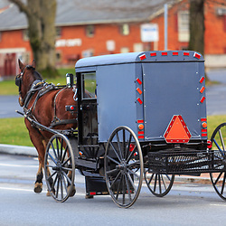 Bird-in-Hand, PA / USA - January 10, 2016:  An Amish buggy in Bird-in-Hand, Lancaster County, PA