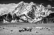 Chomolonzo, on Tibet-Nepal border, from yak herders campsite near Khama valley, Tibet