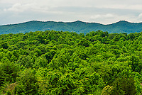 Blue Ridge Mountains, from  Blue Ridge Vineyard, Eagle Rock, Botetourt County, near Roanoke, Virginia USA.