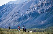 Alaska. Arctic National Wildlife Refuge ANWR . Upper Aichilic River drainage.