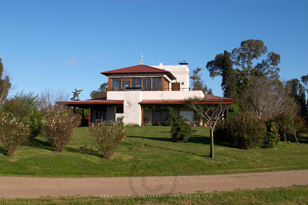 The house at the edge of the vineyards. Bodega Juanico Familia Deicas Winery, Juanico, Canelones, Uruguay, South America