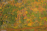 Aerial photo of Fall colors in Middle Tennesse.