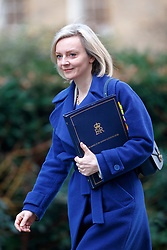© Licensed to London News Pictures. 17/01/2017. London, UK. Justice Secretary LIZ TRUSS attends a cabinet meeting in Downing Street on Tuesday, 17 January 2017 before Prime Minister Theresa May's Brexit plan speech. Photo credit: Tolga Akmen/LNP
