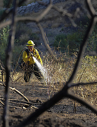 June 28, 2017 - Los Angeles, California, U.S - Firefighters try to extinguish the remaining hot spots from a brush fire in Burbank, California, June 28, 2017. A brush fire broke out on a hillside in Burbank, prompting mandatory evacuations as the flames burned near homes. (Credit Image: © Ringo Chiu via ZUMA Wire)