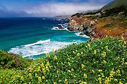 The Big Sur coast at Rocky Point, Big Sur, California USA