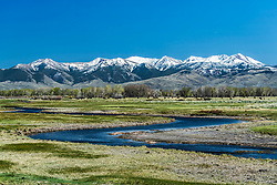 Thousand Springs Creek winding through a cattle ranch below the towering Pioneer Mountains near Mackey Idaho