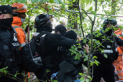 Aylesbury Vale, UK. 1st October, 2020. National Eviction Team bailiffs working on behalf of HS2 Ltd handle a female anti-HS2 activist during evictions from a wildlife protection camp in the ancient woodland which inspired Roald Dahl's Fantastic Mr Fox at Jones' Hill Wood. Around 40 environmental activists and local residents, some of whom living in makeshift tree houses 60 feet above the ground, were present during the evictions at Jones' Hill Wood which had served as one of several protest camps set up along the route of the £106bn HS2 high-speed rail link in order to resist the controversial infrastructure project.