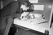 Young Scientists Exhibition.1969..01/01/1969.1st January 1969..The Aer Lingus Young Scientist Exhibition 1969 at the RDS..Picture shows Kieran Archer, a pupil at Presentation Brothers College Cork finishing his exhibit showing oxidation ditches. ...