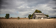 A raised-center barn in southern Kane County has had many years of service. It has endured the searing sun of summer, the stinging wind of winter, and the soft charms of spring and autumn.