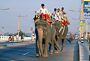 Riding Elephants, Delhi, India
