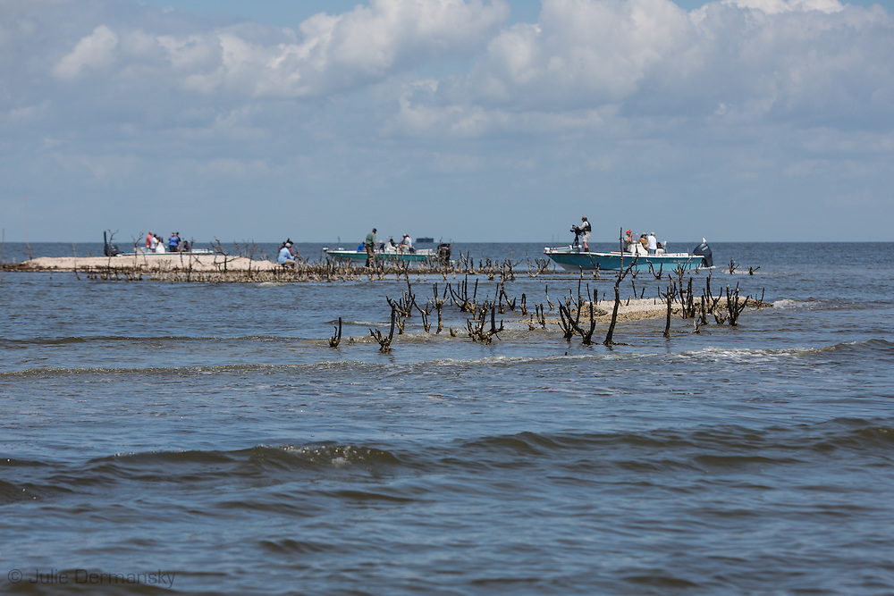 March 31, 2015,  Five years after the BP oil spill, Cat Island, a barrier island in Plaquemines Parish, that was home to a bird rookery before before the BP oil spill, has all but eroded away. <br /> The island was hit heavily with oil from the BP oil spill. Roots of mangrove trees can be seen at lowtide.