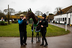 Nicky Henderson and Buveur D'Air with his stable hand Hannah Ryan poses for the media during the visit to Nicky Henderson's yard at Seven Barrows, Lambourn.
