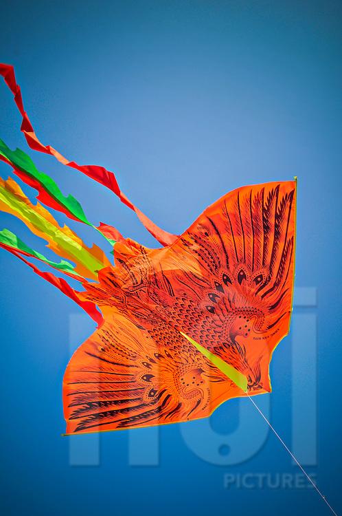 Kite flying above Nha Trang beach, Khanh Hoa Province, Vietnam, Southeast Asia