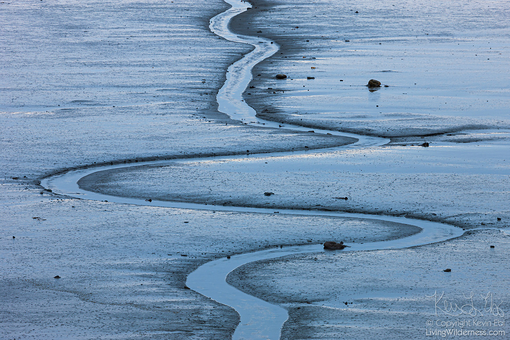At low tide, water carves a curved, shallow channel through the mudflats at Stokksnes, Iceland.