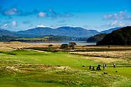 Photographer: Chris Hill, Murvagh Golf Club, Donegal