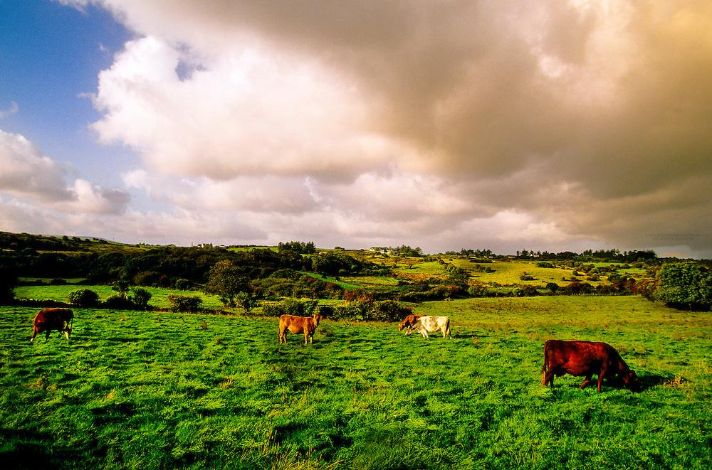 County Clare, Ireland